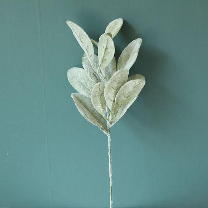 Ветка листики бархатные