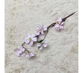 Веточки яблоневый цвет
