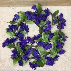 Лиана ромашки фиолетовые