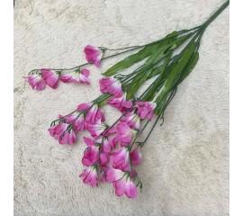 Букет фрезия малиновая