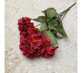 Букет гортензия красная