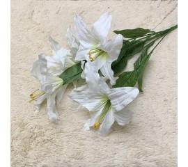 Букет лилия белая