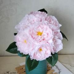 Букет связка пионов 25 см - нежно-розовые