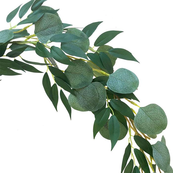 Лиана эвкалипт с ивой зеленая