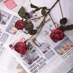 """Гілка троянда """"Вінтаж"""" - червона"""