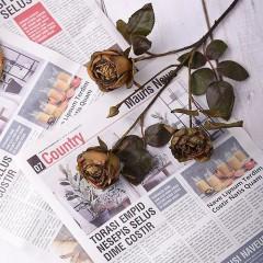"""Гілка троянда """"Вінтаж"""" - мокко"""