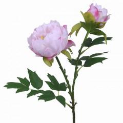 Гілка півонія з бутоном ніжно-рожевий