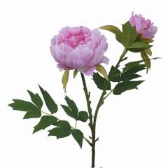 Гілка півонія з бутоном рожевий