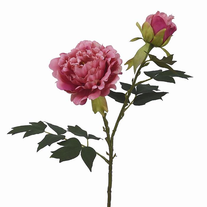 Ветка пион с бутоном темно-розовый