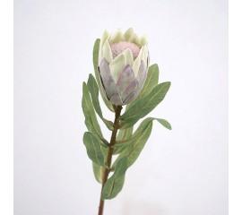 "Ветка цветок ""Протея"" зеленая 49 см"