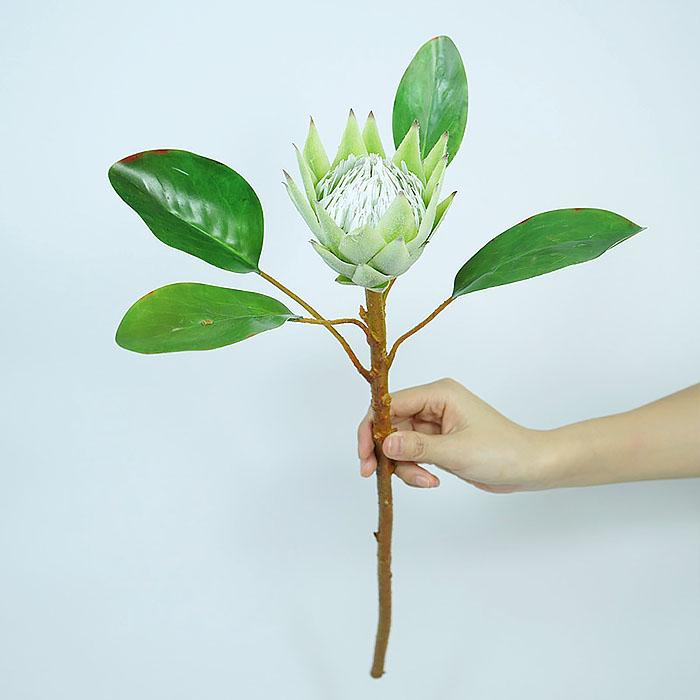 """Ветка цветок """"Протея"""" 42 см - салатовая"""