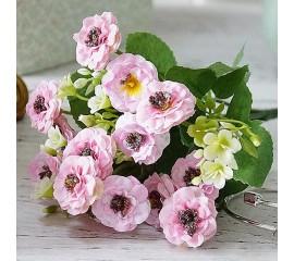 Букет маргаритки розовые