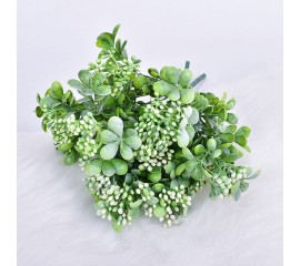Букет зелени морошка - белая