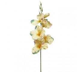 Веточка гладиолус персиковый