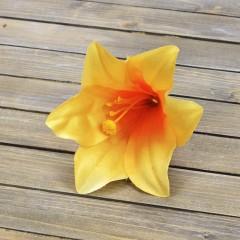 Головка лилии оранжевая