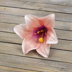 Головка лилии персиковая