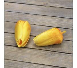 Головка тюльпан желтый
