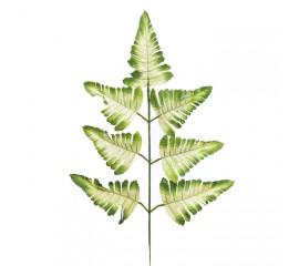 Ветка листики папоротника бело-зеленая