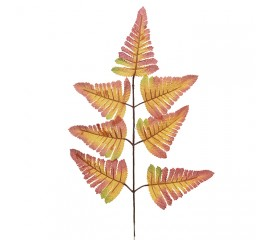 Ветка листики папоротника оранжевая