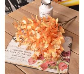 Букет эвкалипт оранжевый 48 см