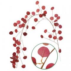 Лиана эвкалипт бордо 170 см