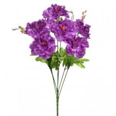Букет півонії на 6 голів - фіолетові
