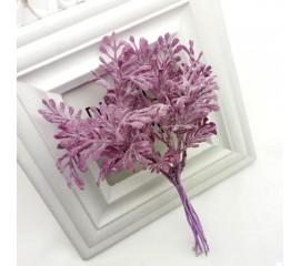 Листики в пучке пурпурные