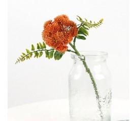 Ветка очиток - оранжевая
