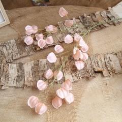 Ветка физалис розовый
