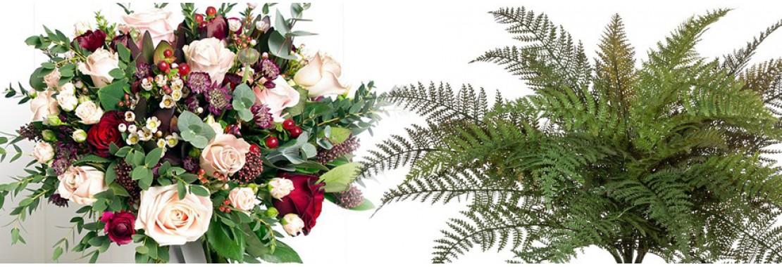 Штучні квіти та рослини