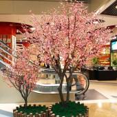 Декоративные цветы сакуры