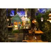 Оформление ресторана, бара, кафе декоративными растениями