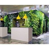 Вертикальное озеленение помещений искусственными растениями