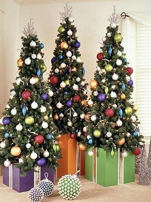 Несколько елок в доме