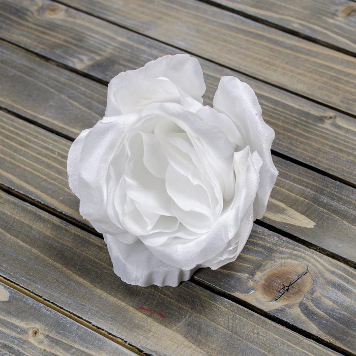 Купить розы луиза одье